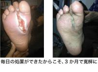 shinsai04